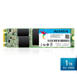 Ổ cứng SSD Adata 1TB M.2 2280 SATA- (ASU800NS38-1TT-C)