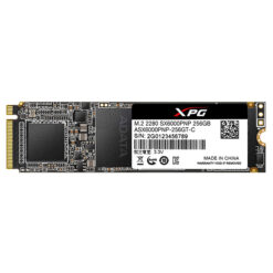 Ổ cứng SSD Adata 256GB M.2 2280 PCIe (ASX6000PNP-256GT-C)